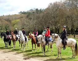 paseo a caballo en Valencia